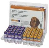 Vaccinations are needed for every dog